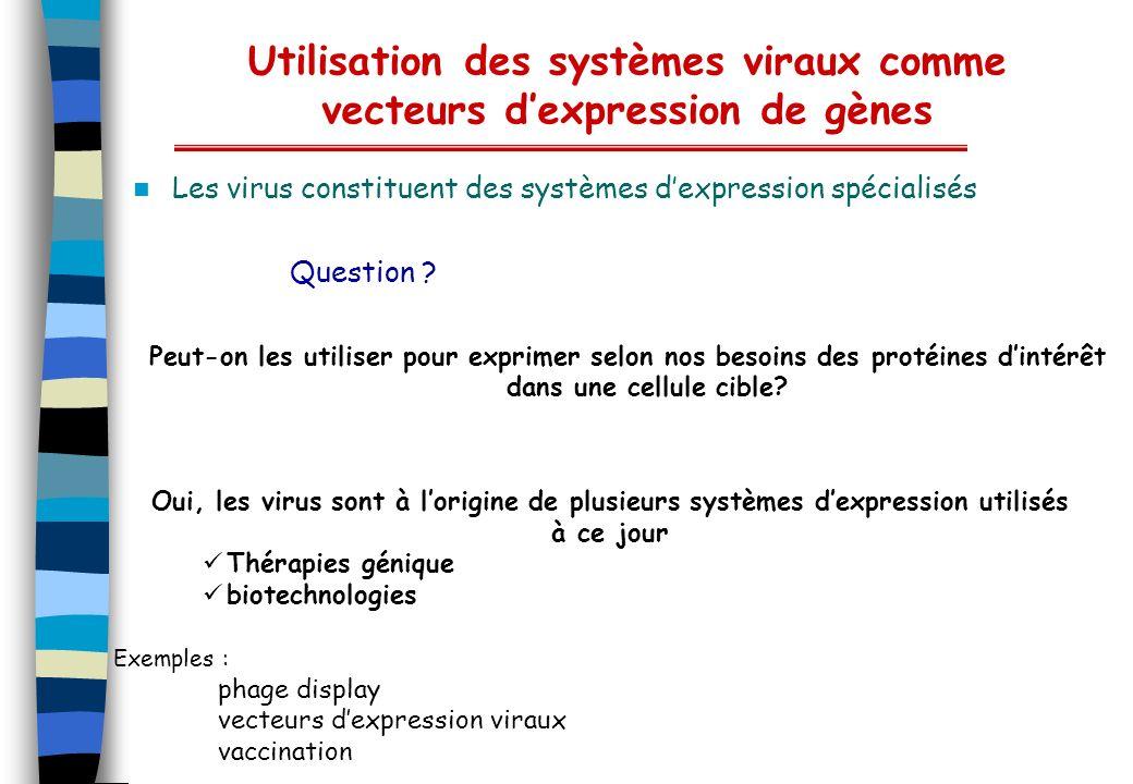 Utilisation des systèmes viraux comme vecteurs dexpression de gènes Les virus constituent des systèmes dexpression spécialisés Question ? Peut-on les