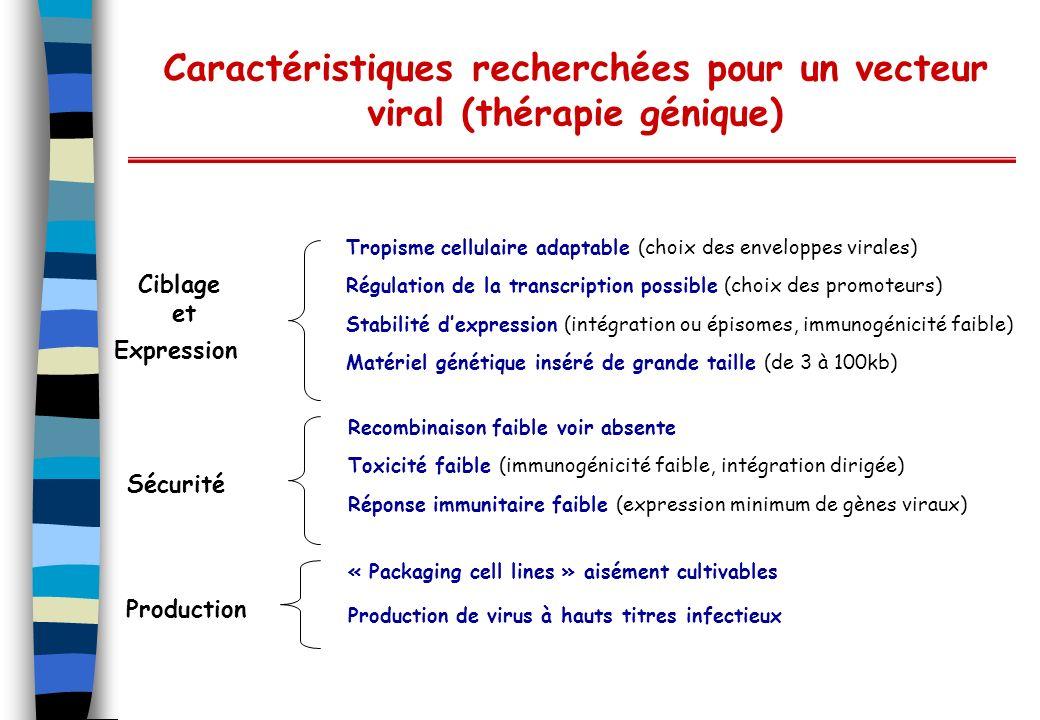 Caractéristiques recherchées pour un vecteur viral (thérapie génique) Ciblage et Expression Sécurité Production Tropisme cellulaire adaptable (choix d