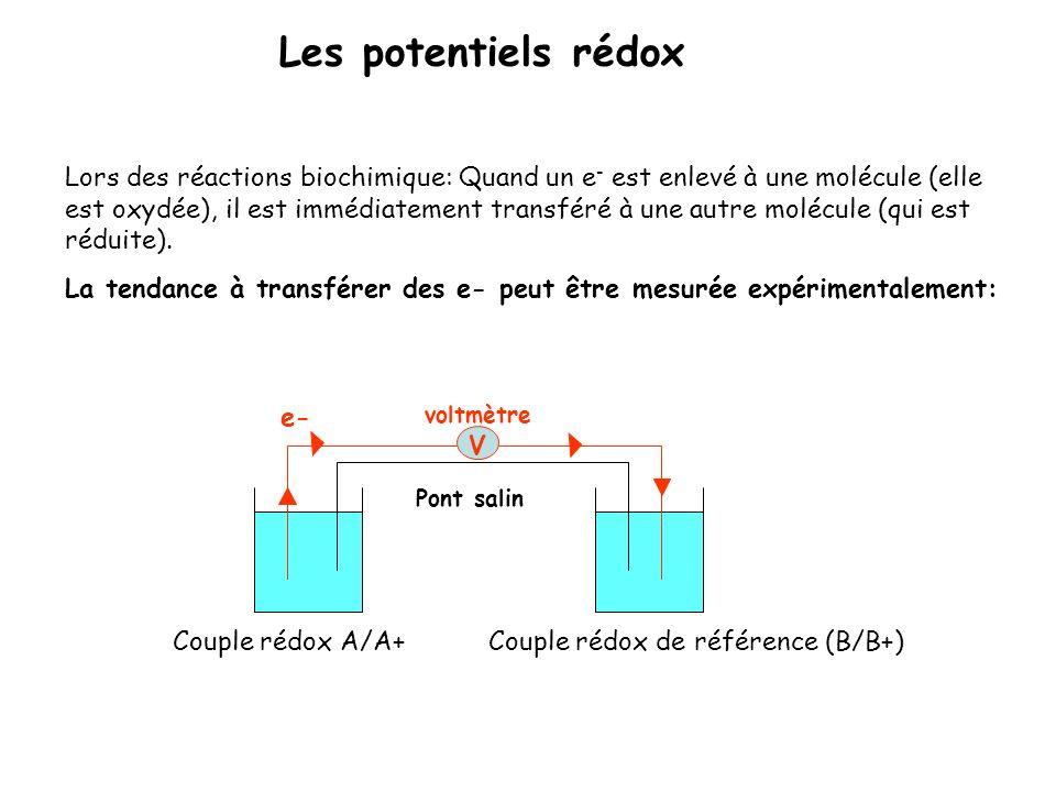 Lors des réactions biochimique: Quand un e - est enlevé à une molécule (elle est oxydée), il est immédiatement transféré à une autre molécule (qui est