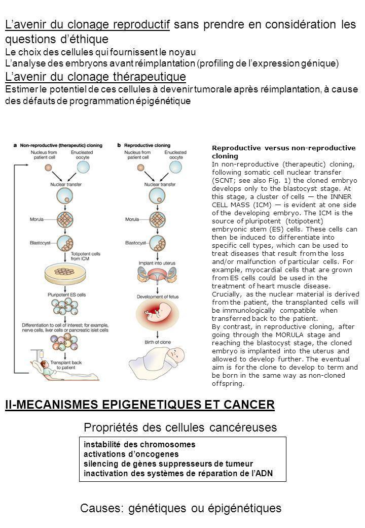 Au cours de la cancérogenèse: -une importante hypométhylation générale épigénétique: activation doncogènes génétique: augmente linstabilité des centromères et donc des chromosomes -des hyperméthylations locales dîlots CpG épigénétique: silencing de gènes suppresseur de tumeur, expression biallélique de facteur de croissance normalement imprintés génétique: augmentation du taux de mutations ponctuelles Épigénétiques altérations ou cancer en premier.