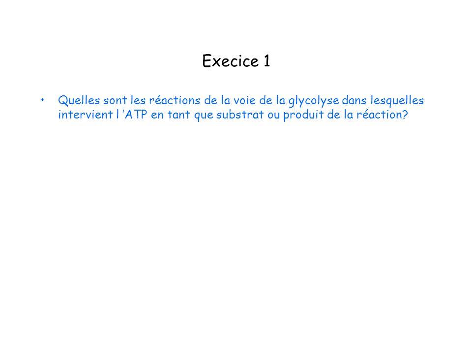 Execice 1 Quelles sont les réactions de la voie de la glycolyse dans lesquelles intervient l ATP en tant que substrat ou produit de la réaction?