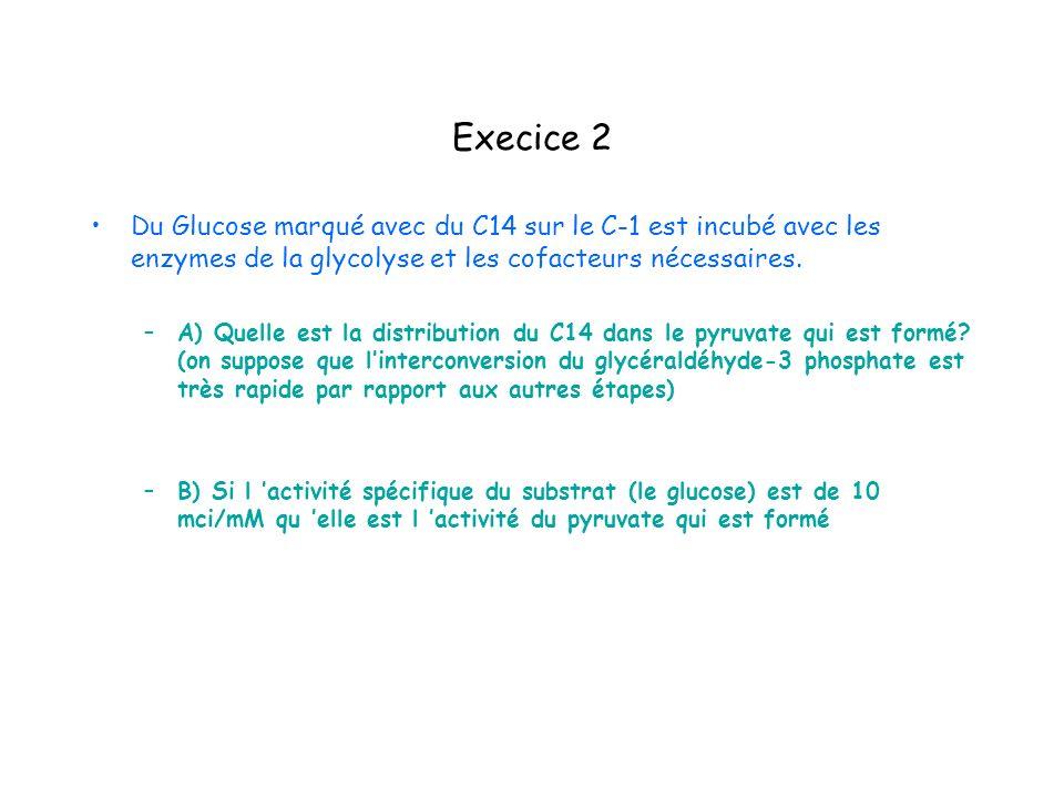 Execice 2 Du Glucose marqué avec du C14 sur le C-1 est incubé avec les enzymes de la glycolyse et les cofacteurs nécessaires. –A) Quelle est la distri