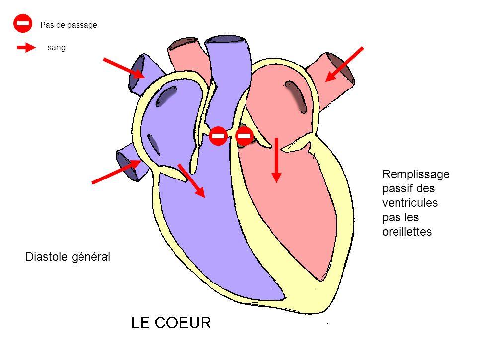 Remplissage passif des ventricules pas les oreillettes Diastole général Pas de passage sang