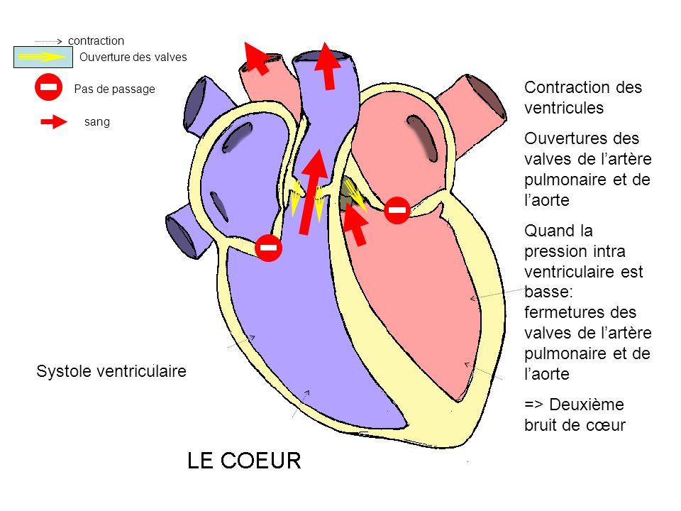 contraction Ouverture des valves Pas de passage sang Contraction des ventricules Ouvertures des valves de lartère pulmonaire et de laorte Quand la pre
