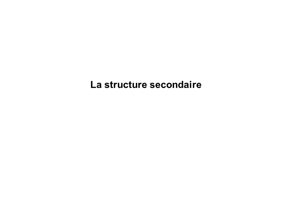 La structure secondaire