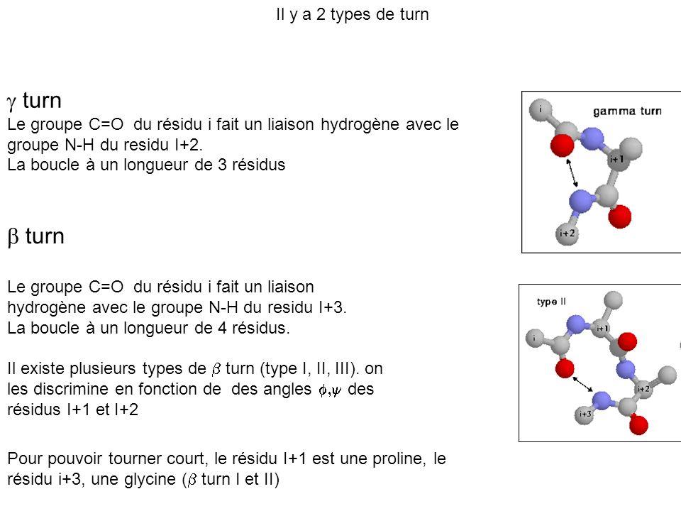 turn Le groupe C=O du résidu i fait un liaison hydrogène avec le groupe N-H du residu I+2. La boucle à un longueur de 3 résidus Il y a 2 types de turn