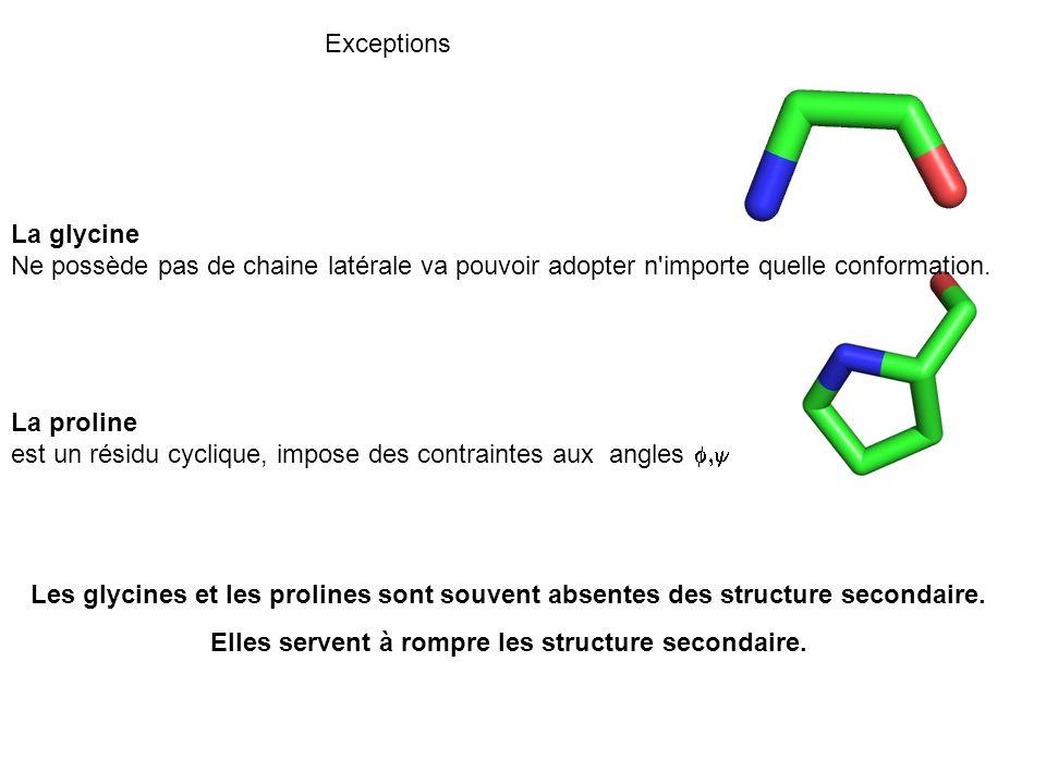 Exceptions La glycine Ne possède pas de chaine latérale va pouvoir adopter n'importe quelle conformation. La proline est un résidu cyclique, impose de