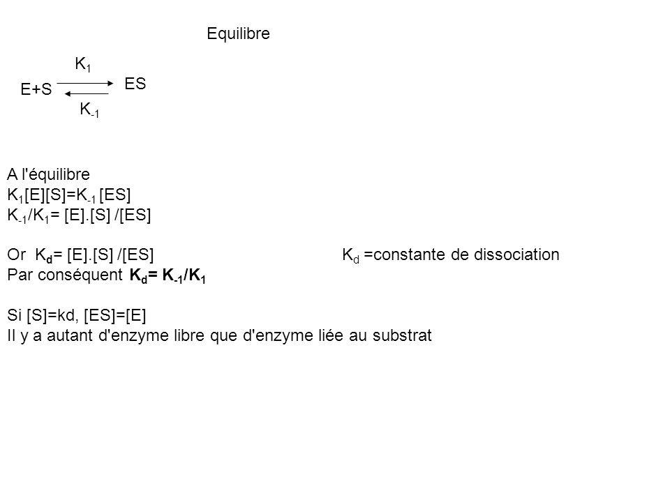 Equilibre A l'équilibre K 1 [E][S]=K -1 [ES] K -1 /K 1 = [E].[S] /[ES] Or K d = [E].[S] /[ES] K d =constante de dissociation Par conséquent K d = K -1