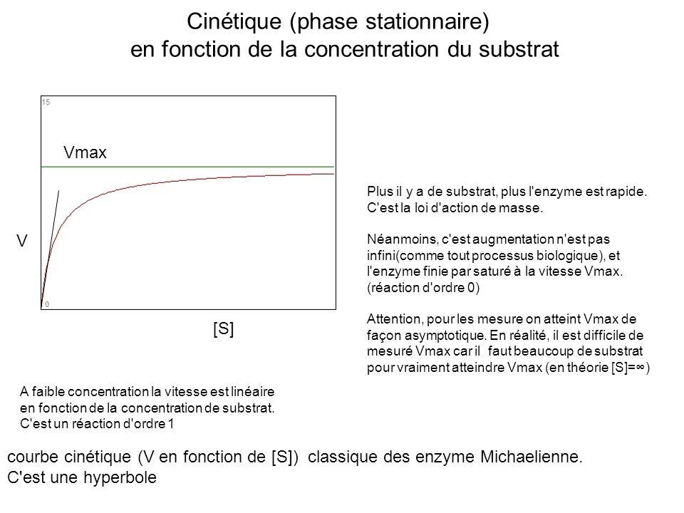 Cinétique (phase stationnaire) en fonction de la concentration du substrat courbe cinétique (V en fonction de [S]) classique des enzyme Michaelienne.
