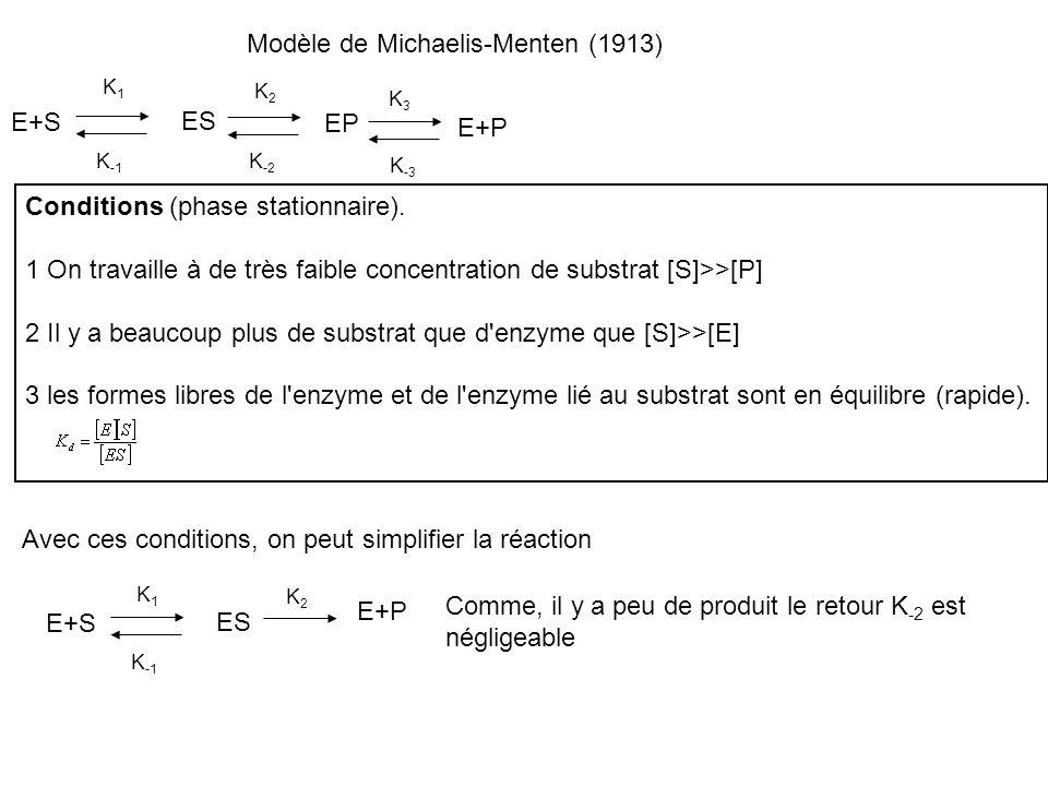 Modèle de Michaelis-Menten (1913) E+S ES K -1 K -2 EP K3K3 K -3 E+P K1K1 K2K2 Conditions (phase stationnaire). 1 On travaille à de très faible concent