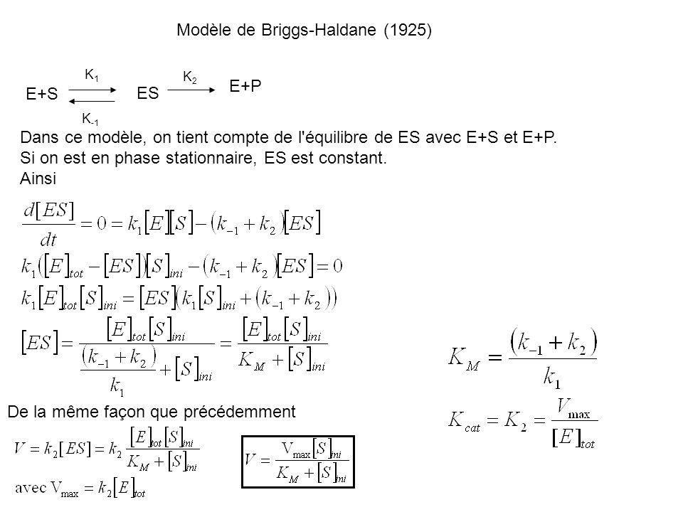 Modèle de Briggs-Haldane (1925) K1K1 K2K2 E+S ES K -1 E+P Dans ce modèle, on tient compte de l'équilibre de ES avec E+S et E+P. Si on est en phase sta