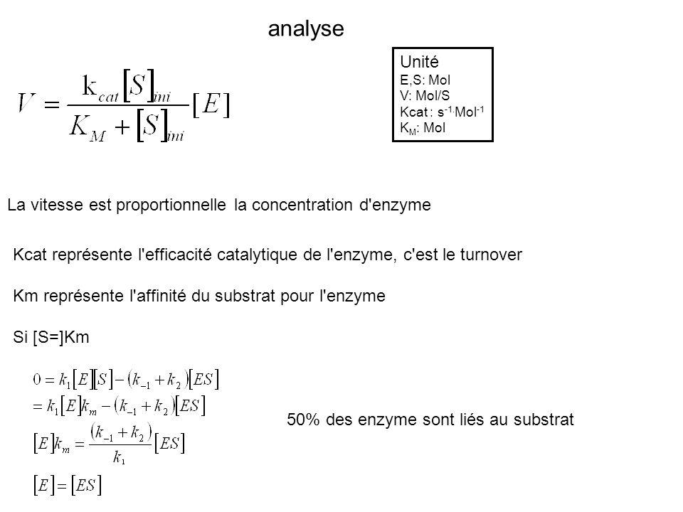analyse La vitesse est proportionnelle la concentration d'enzyme Unité E,S: Mol V: Mol/S Kcat : s -1. Mol -1 K M : Mol Kcat représente l'efficacité ca