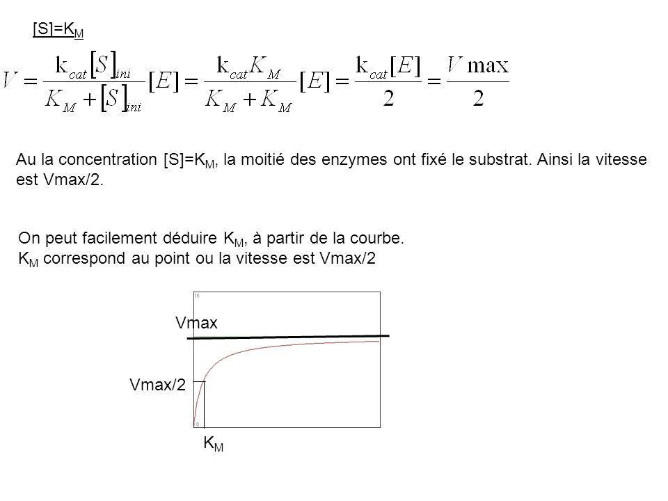 [S]=K M Au la concentration [S]=K M, la moitié des enzymes ont fixé le substrat. Ainsi la vitesse est Vmax/2. On peut facilement déduire K M, à partir