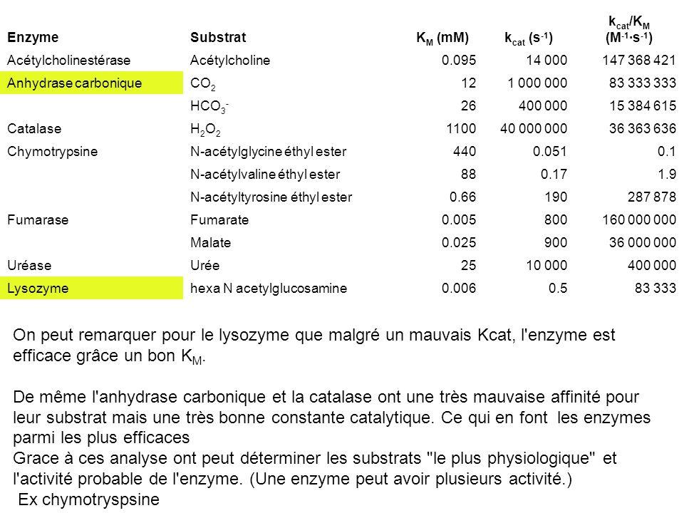 EnzymeSubstratK M (mM)k cat (s -1 ) k cat /K M (M -1 ·s -1 ) AcétylcholinestéraseAcétylcholine0.09514 000147 368 421 Anhydrase carboniqueCO 2 121 000