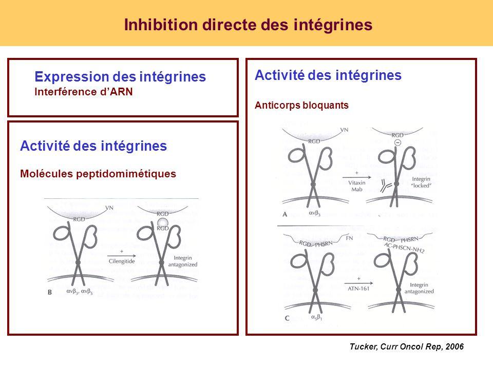 Inhibition directe des intégrines Activité des intégrines Molécules peptidomimétiques Expression des intégrines Interférence dARN Tucker, Curr Oncol R