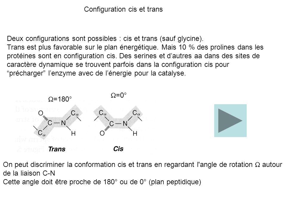 Deux configurations sont possibles : cis et trans (sauf glycine). Trans est plus favorable sur le plan énergétique. Mais 10 % des prolines dans les pr