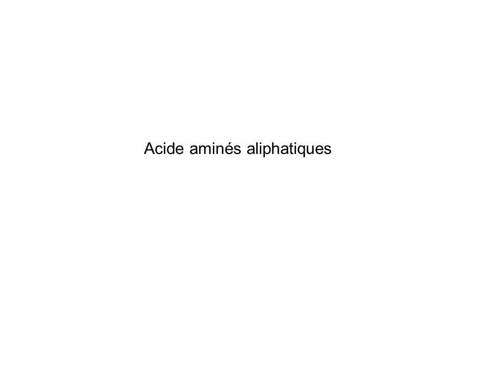 Acide aminés aliphatiques