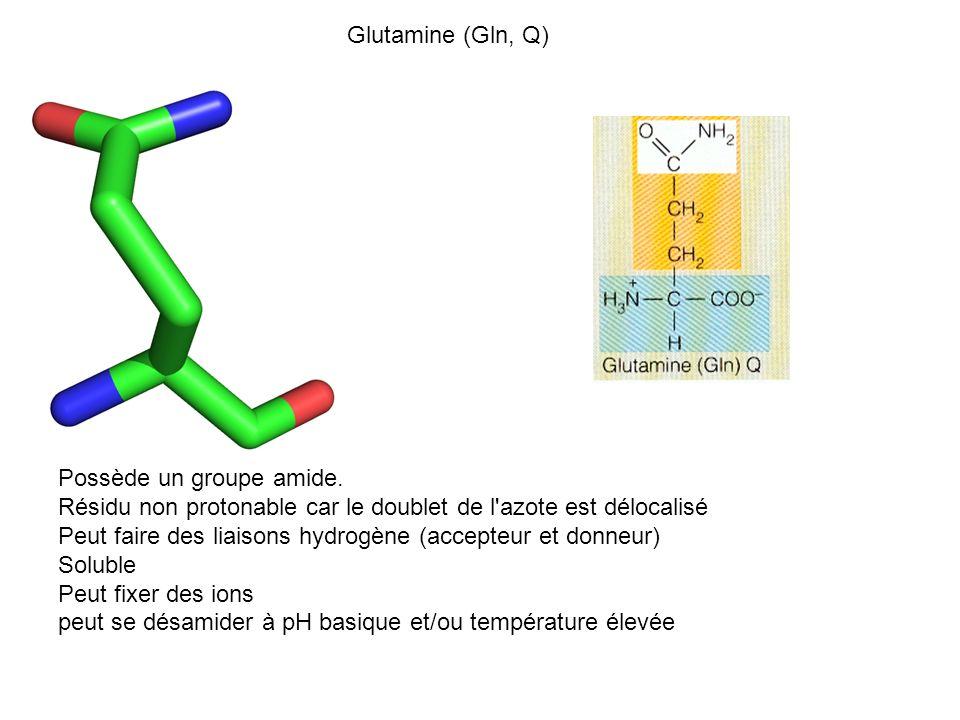 Glutamine (Gln, Q) Possède un groupe amide. Résidu non protonable car le doublet de l'azote est délocalisé Peut faire des liaisons hydrogène (accepteu