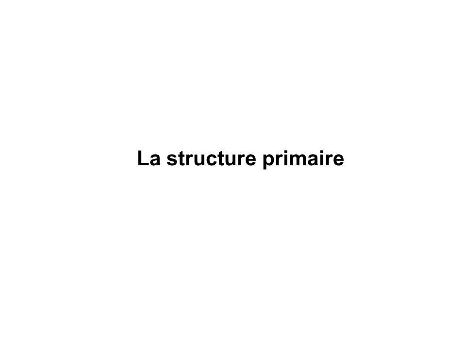La chaîne peptidique: Une protéine est un hétéro-polymère linéaire dacides aminés.
