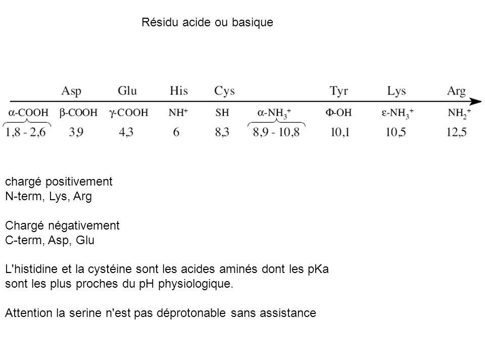 Résidu acide ou basique chargé positivement N-term, Lys, Arg Chargé négativement C-term, Asp, Glu L'histidine et la cystéine sont les acides aminés do