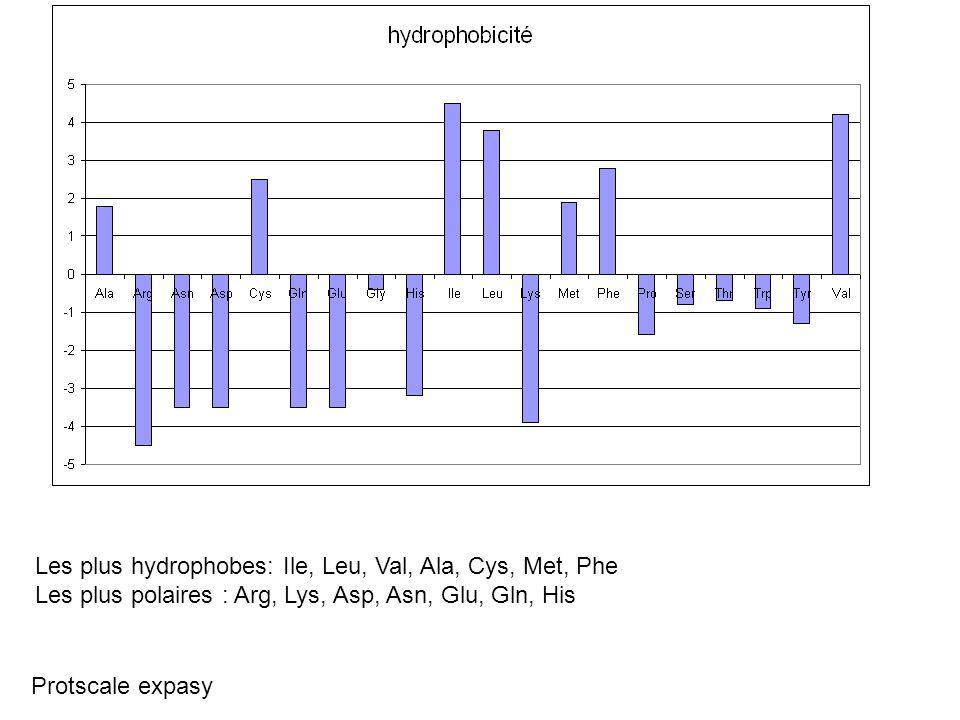Les plus hydrophobes: Ile, Leu, Val, Ala, Cys, Met, Phe Les plus polaires : Arg, Lys, Asp, Asn, Glu, Gln, His Protscale expasy
