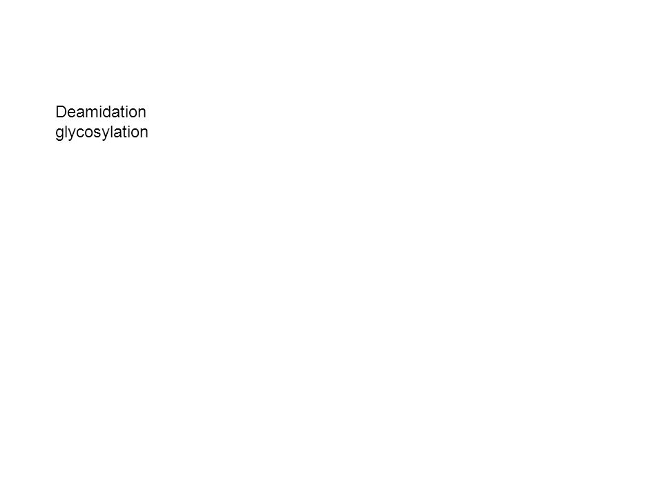 Deamidation glycosylation