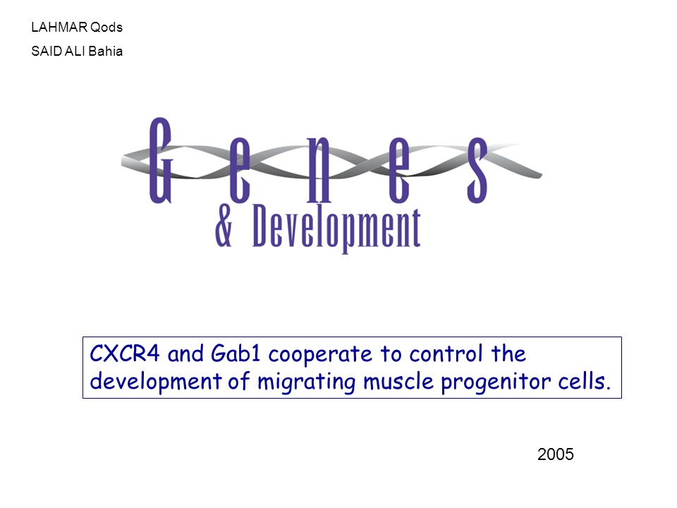 CXCR4 and Gab1 cooperate to control the development of migrating muscle progenitor cells. 2005 LAHMAR Qods SAID ALI Bahia