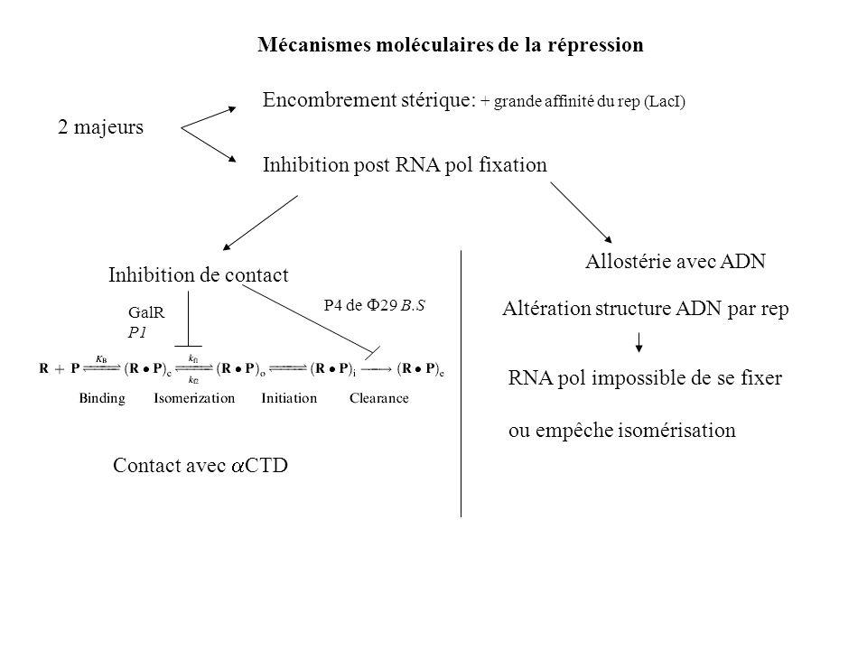 Mécanismes moléculaires de la répression 2 majeurs Encombrement stérique: + grande affinité du rep (LacI) Inhibition post RNA pol fixation Inhibition