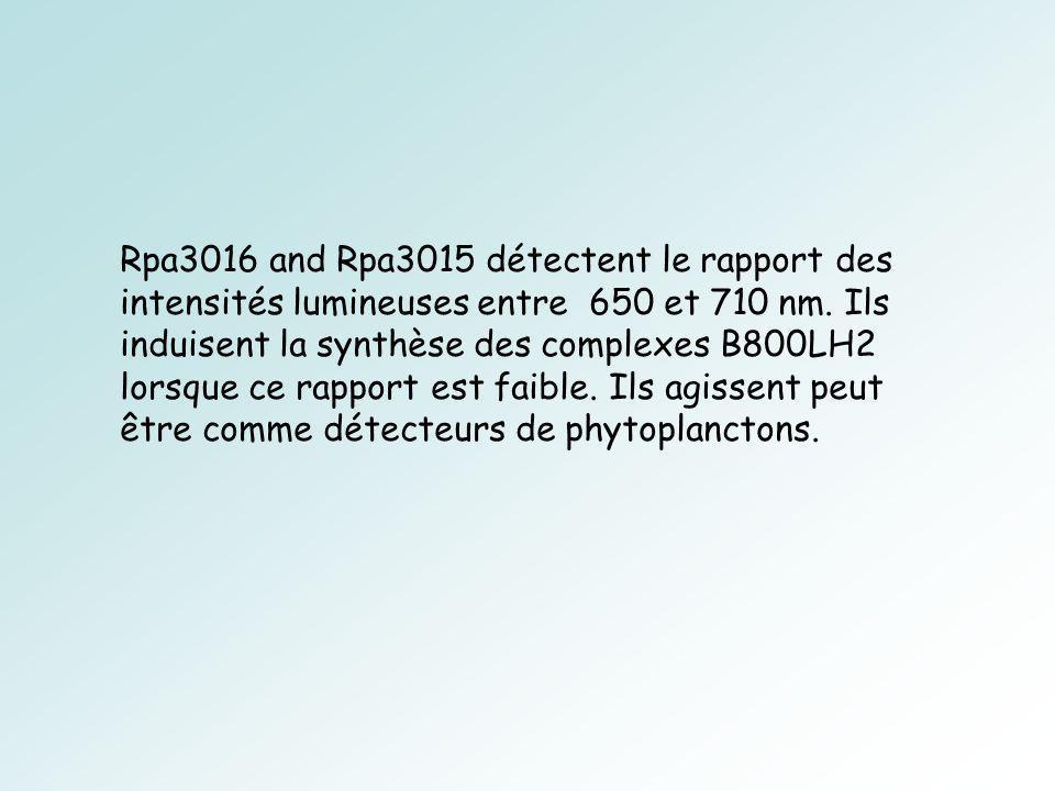 Rpa3016 and Rpa3015 détectent le rapport des intensités lumineuses entre 650 et 710 nm.