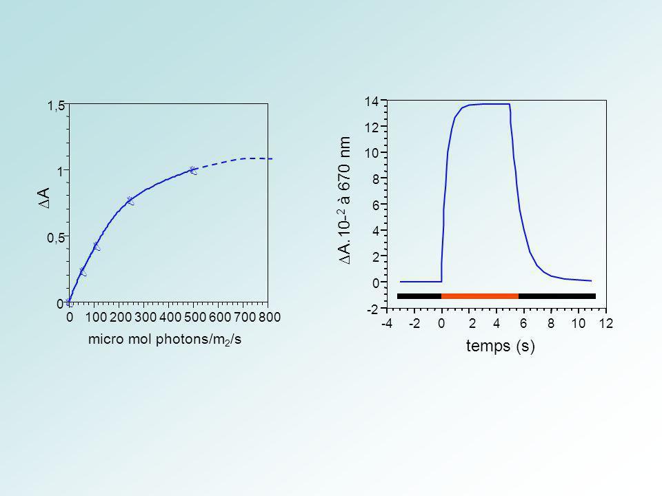 B B B B B 0 0,5 1 1,5 0100200300400500600700800 A micro mol photons/m 2 /s