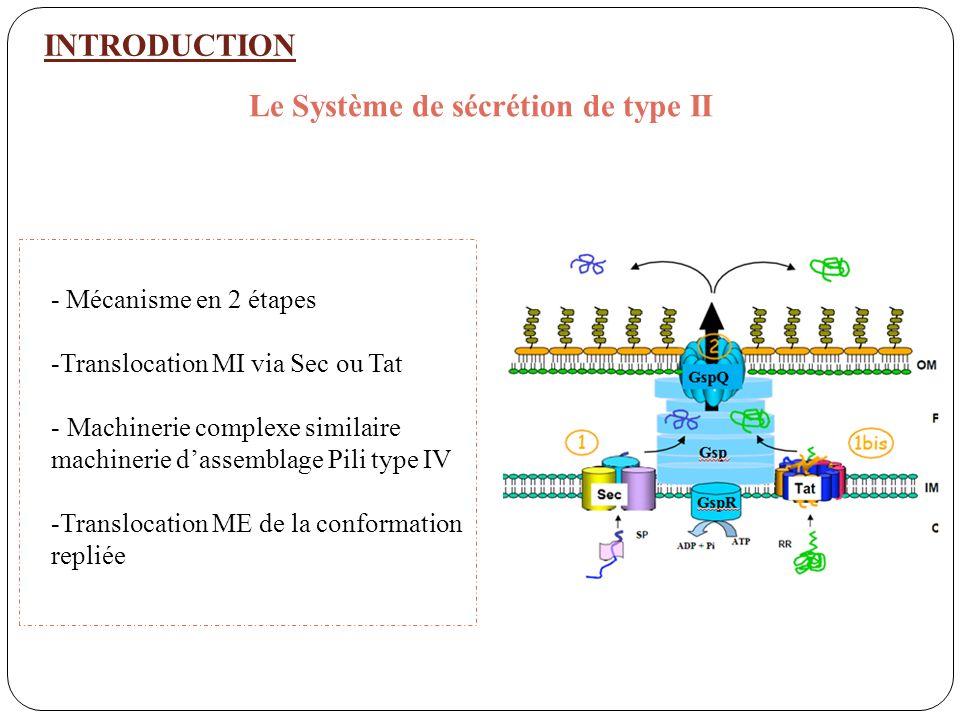 INTRODUCTION Le Système de sécrétion de type II - Mécanisme en 2 étapes -Translocation MI via Sec ou Tat - Machinerie complexe similaire machinerie da
