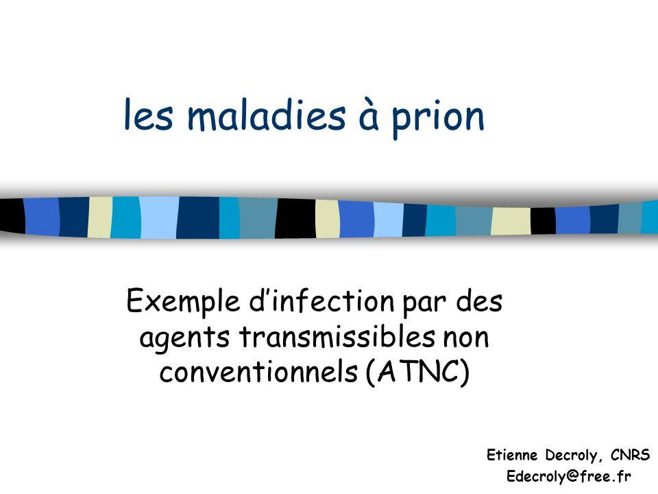 les maladies à prion Exemple dinfection par des agents transmissibles non conventionnels (ATNC) Etienne Decroly, CNRS Edecroly@free.fr