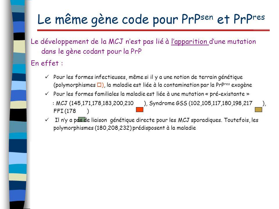 Le même gène code pour PrP sen et PrP res Le développement de la MCJ nest pas lié à lapparition dune mutation dans le gène codant pour la PrP En effet