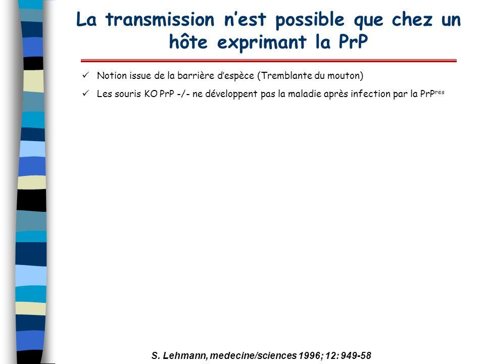 La transmission nest possible que chez un hôte exprimant la PrP Notion issue de la barrière despèce (Tremblante du mouton) Les souris KO PrP -/- ne dé