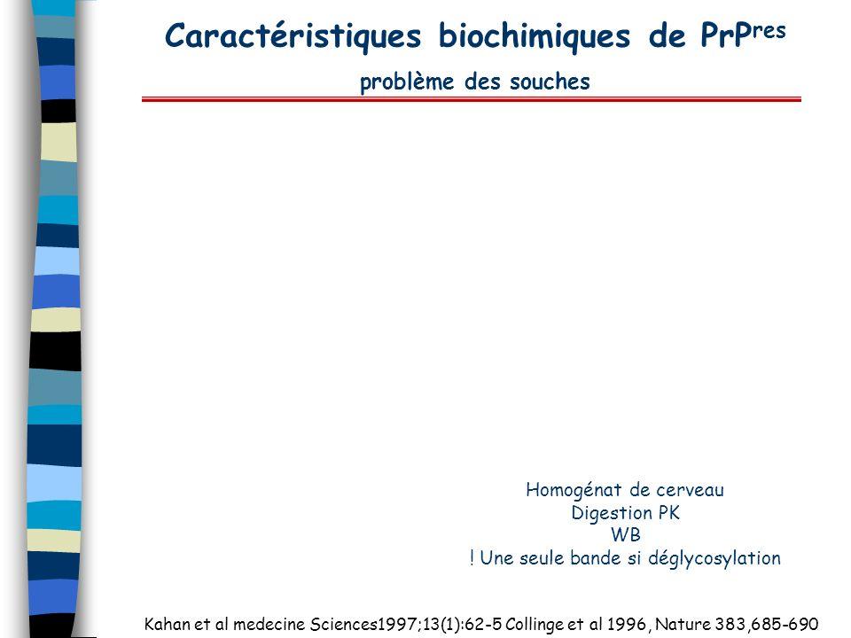 Caractéristiques biochimiques de PrP res problème des souches Homogénat de cerveau Digestion PK WB ! Une seule bande si déglycosylation Kahan et al me