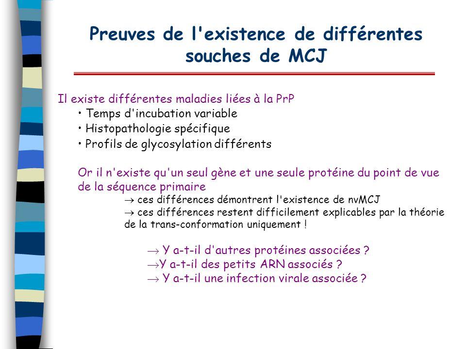Preuves de l'existence de différentes souches de MCJ Il existe différentes maladies liées à la PrP Temps d'incubation variable Histopathologie spécifi