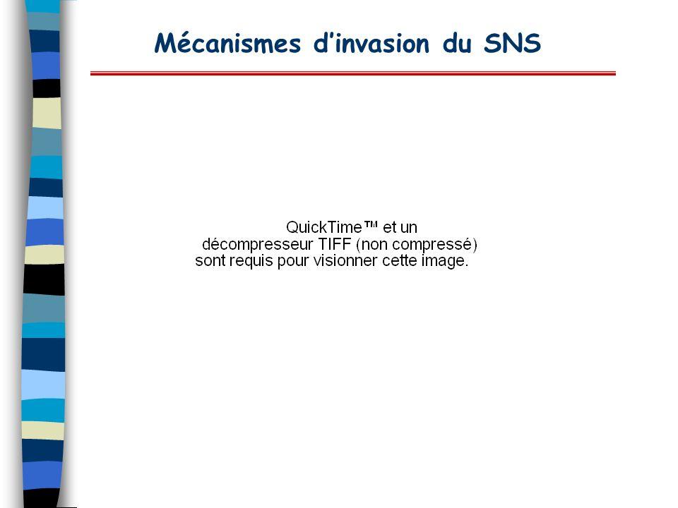 Mécanismes dinvasion du SNS