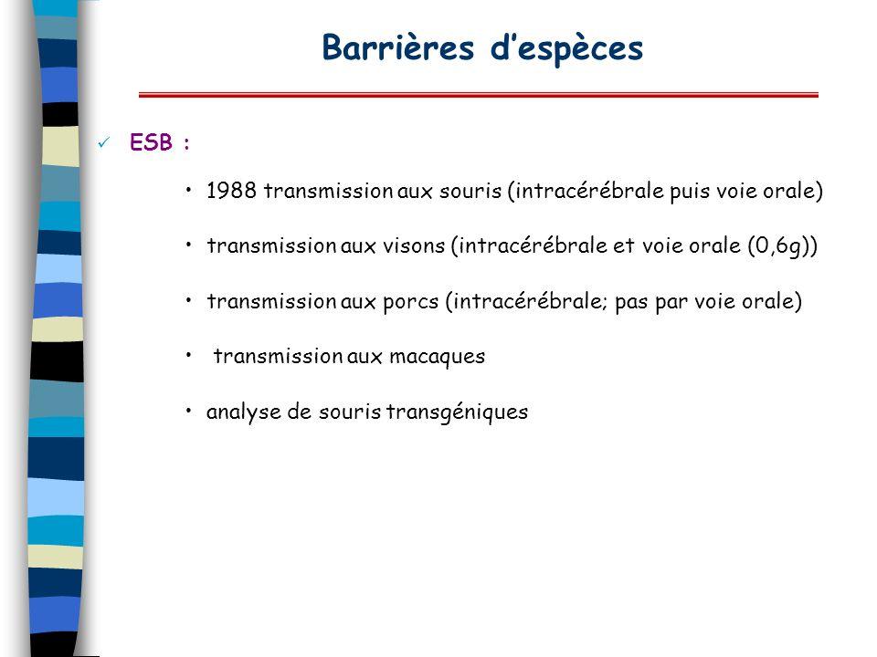 ESB : 1988 transmission aux souris (intracérébrale puis voie orale) transmission aux visons (intracérébrale et voie orale (0,6g)) transmission aux por