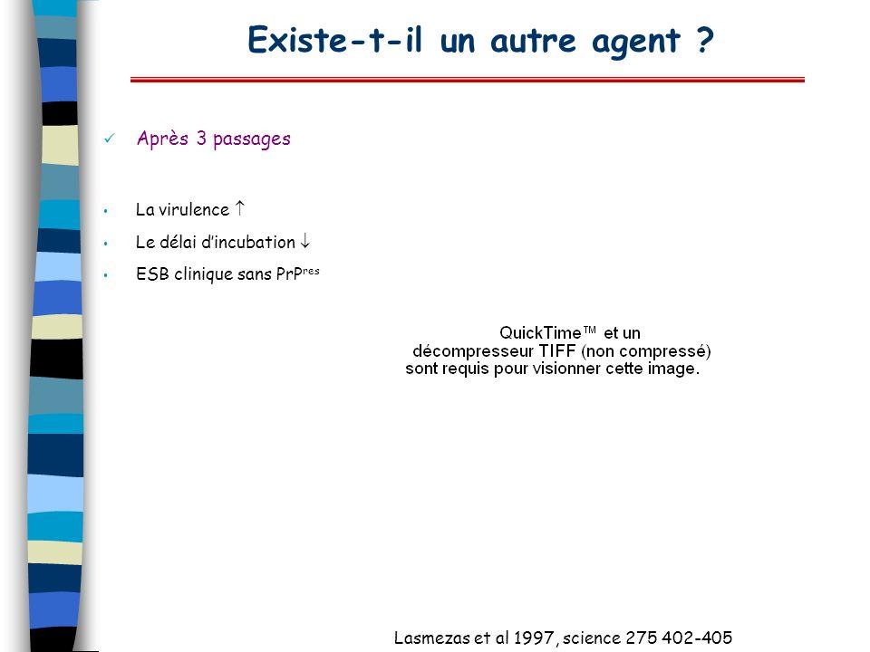 Existe-t-il un autre agent ? Après 3 passages La virulence Le délai dincubation ESB clinique sans PrP res Lasmezas et al 1997, science 275 402-405
