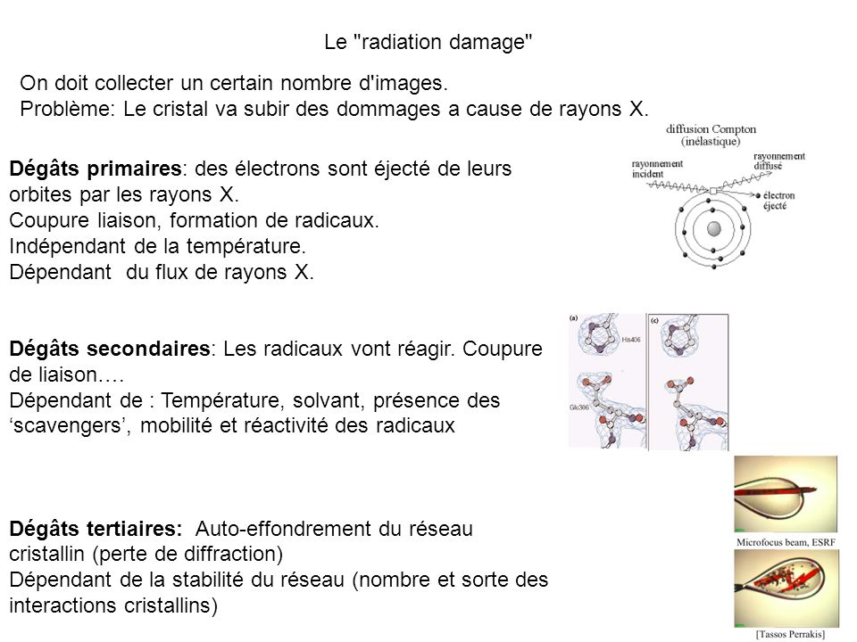 -Correction spatiale du détecteur (les détecteurs sont souvent plats) (projection d une grille) -détermination du bruit et des zones actives du détecteur (beam stop, ombres …) détecteur (dark current) et diffusion des rayons X -paramètres de la maille et orientation du cristal -Mesure des intensités -Corrections des intensités