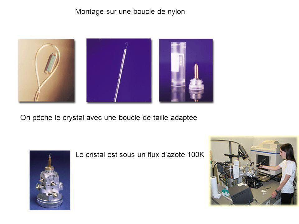 Montage sur une boucle de nylon On pêche le crystal avec une boucle de taille adaptée Le cristal est sous un flux d'azote 100K