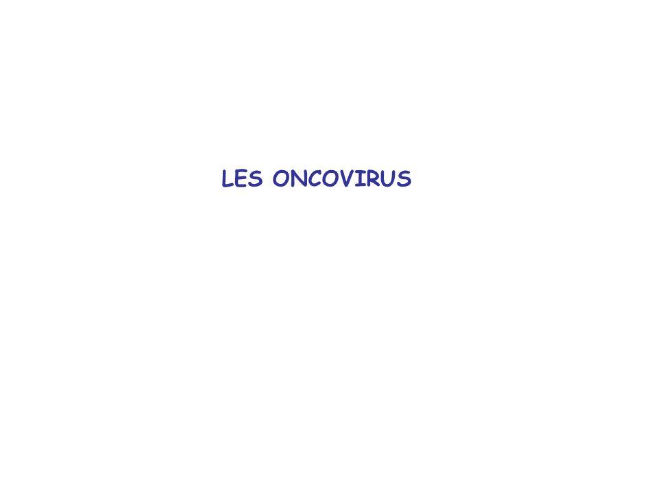 LES ONCOVIRUS