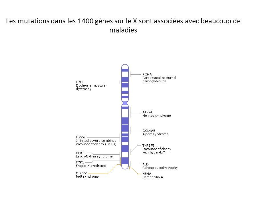 Les mutations dans les 1400 gènes sur le X sont associées avec beaucoup de maladies