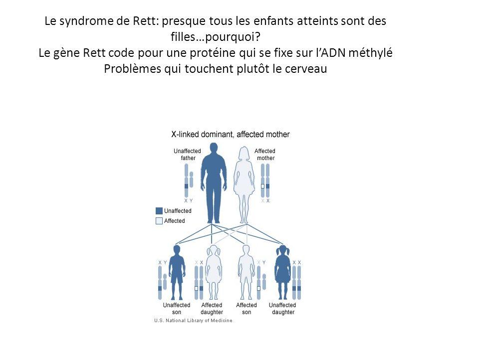 Le syndrome de Rett: presque tous les enfants atteints sont des filles…pourquoi? Le gène Rett code pour une protéine qui se fixe sur lADN méthylé Prob