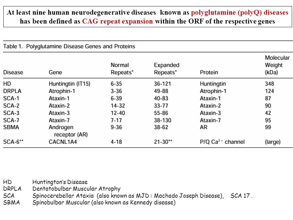 HDHuntingtons Disease DRPLADentatobulbar Muscular Atrophy SCASpinocerebellar Ataxia (also known as MJD : Machado Joseph Disease), SCA 17. SBMASpinobul