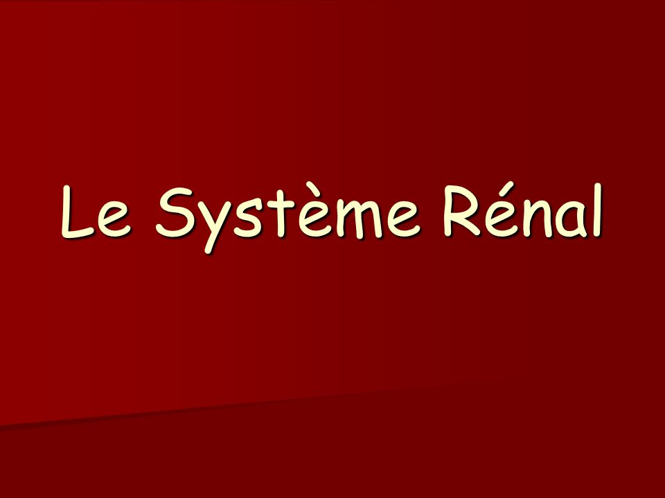 La réabsorption de leau Mécanisme : Mécanisme : -Réabsorption obligatoire -Réabsorption facultative Régulation Régulation Contrôle hormonal Contrôle hormonal