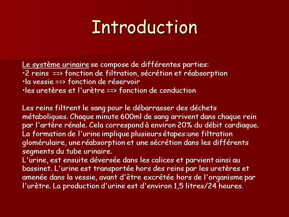 Introduction Le système urinaire se compose de différentes parties: 2 reins ==> fonction de filtration, sécrétion et réabsorption la vessie ==> foncti