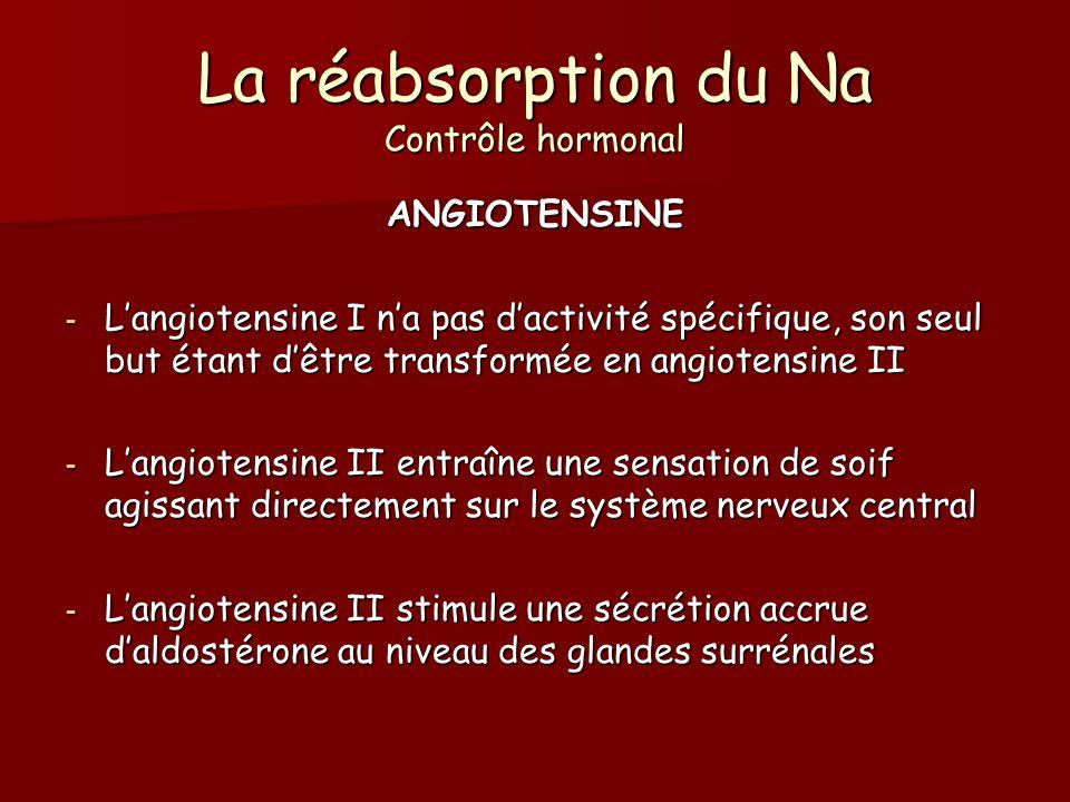 La réabsorption du Na Contrôle hormonal ANGIOTENSINE - Langiotensine I na pas dactivité spécifique, son seul but étant dêtre transformée en angiotensi