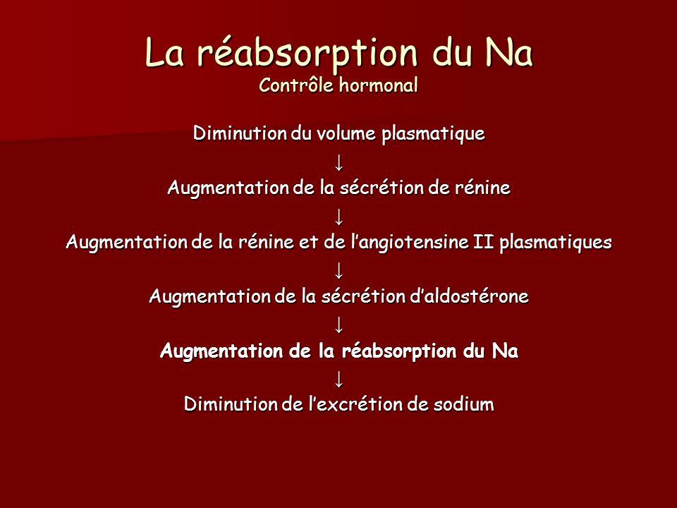 La réabsorption du Na Contrôle hormonal Diminution du volume plasmatique Augmentation de la sécrétion de rénine Augmentation de la rénine et de langio