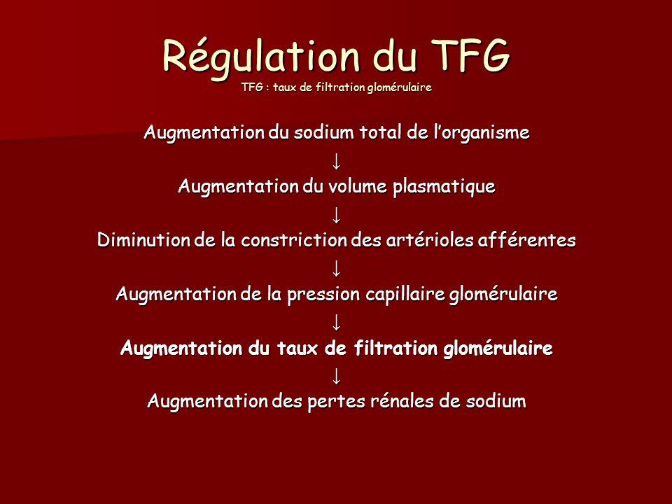 Régulation du TFG TFG : taux de filtration glomérulaire Augmentation du sodium total de lorganisme Augmentation du volume plasmatique Diminution de la